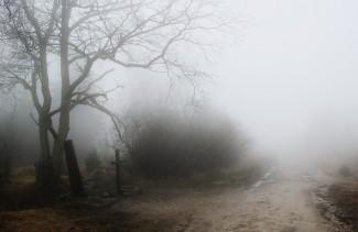 В Пензенской области разыскивают осквернителя могил