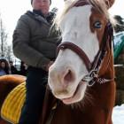 С момента исчезновения Михаила Казенкина прошло уже полгода, а дела нет