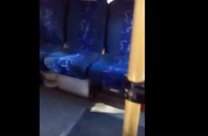 В пензенской маршрутке прокатился «мохнатый пассажир»