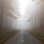 Пензу окутал радиационный туман