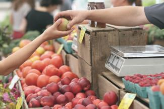 Пензенский суд решит судьбу яблок