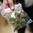 В Пензенской области у наркомана изъяли более 100 граммов марихуаны