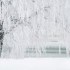 Завтра в Пензе и области похолодает до минус 20 градусов
