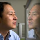 Создателя ГМО-близнецов собираются расстрелять