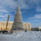 До свидания, Новый год! На площади Ленина разбирают главную елку области