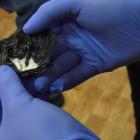 Пензенец может получить 10 лет колонии за два грамма наркотика