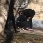 В Сети появилось видео, снятое сразу после падения пензенской пенсионерки из окна