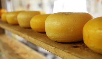 В Пензенской области уничтожили более 100 килограммов сыра