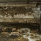 В Пензе в подвале дома всплыл труп