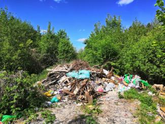 На округе Рогонова готовят экологическую бомбу. Кордон сурка заваливают строительным мусором