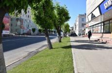 На центральных улицах Пензы появятся рулонные газоны ко Дню города