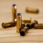 Житель Пензенской области получил реальный срок за изготовление боеприпасов