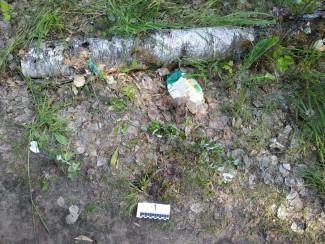В Пензенской области злодей избил и ограбил пенсионерку средь бела дня