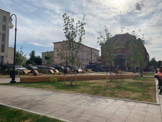 Случилось чудо! В Пензе после скандала позеленела трава на центральной площади города