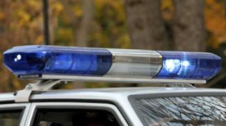В Белинском районе украли двери с доильных установок