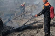 Почему лесные пожары в Пензе тушат по три дня?