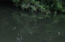Страшная находка: в реке под Пензой обнаружен труп мужчины