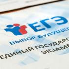 В Пензенской области стали известны предварительные результаты ЕГЭ по информатике