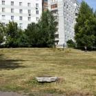 В Пензе восстановят зеленую зону на пересечении улиц Вишневой и Воронова