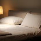 Доверчивая женщина приехала из Москвы в Пензу за несуществующей кроватью