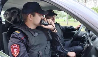 В Пензе две женщины пошли на преступление, чтобы отметить праздник