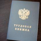 Из школы в Пензенской области уволен работник с криминальным прошлым