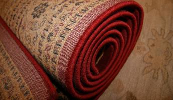 Двое жителей Пензенской области могут получить 5 лет колонии за шерстяной ковер