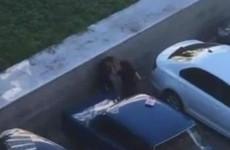 «Суровая Пенза». Горожанин снял на видео избиение девушки на Московской
