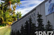 Пензенские депутаты предпочитают готовиться к выборам на тропических островах