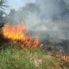 Под Пензой в СНТ «Лесная поляна» произошел серьезный пожар