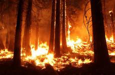 В трех районах Пензенской области установлен 4 класс пожарной опасности