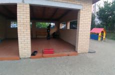 В Пензе от нашествия ос на детский сад пострадали люди