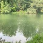 В реке Пензе обнаружили труп молодого рыбака
