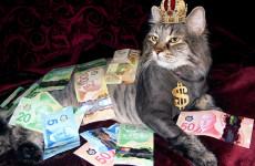 «Деньги есть». У кого самые большие зарплаты в Пензе?