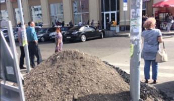 Пензенец возмутился кучей у пешеходного перехода