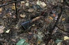 В пензенском селе нашли скелет пропавшего 4 года назад мужчины