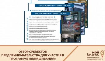 В Пензенской области готовы вырастить бизнесменов