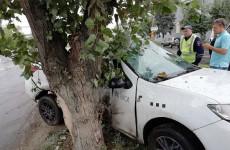 После столкновения с деревом авто пензенца превратилось в нечто неузнаваемое