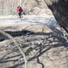 На Севере гулять негде. Жители пензенских окраин просят восстановить парк советских времен