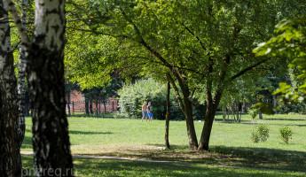 Пензенский парк 40-летия Победы ждут глобальные изменения