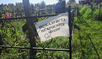 Что происходит с Чемодановским кладбищем, и кто за это ответит