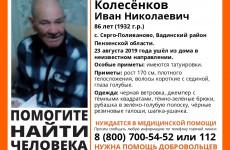 В Пензенской области исчез 86-летний пенсионер