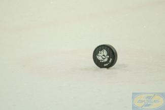 Пензенский «Дизель» покинут два хоккеиста
