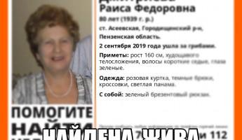 В Пензенской области остановлен поиск 80-летней пенсионерки