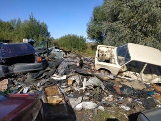 «Брошенные машины». В Пензенской области найдено кладбище автомобилей