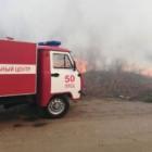 С пожаром в Арбековском лесу боролись пензенские спасатели