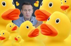 Не пожалели даже магнитик! В Пензе начались обыски у сторонников Навального – из офиса слышны громкие всхлипы