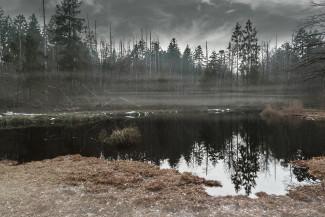 В Пензенской области на болоте рядом с кладбищем нашли труп