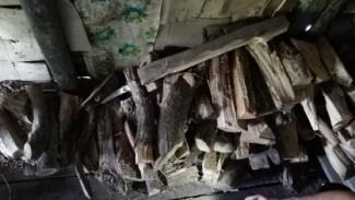 40 ударов поленом. Житель Пензенской области до смерти забил родного брата