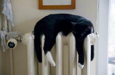 В Пензе подано тепло ко всем жилым многоквартирным домам